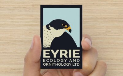 Eyrie Ecology & Ornithology